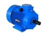 купить асинхронный эл двигатель  АИР90 LA8- 0,75кВт/750об